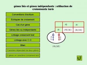 gnes lis et gnes indpendants utilisation de croisements