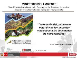 MINISTERIO DEL AMBIENTE Vice Ministerio de Desarrollo Estratgico