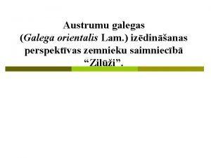 Austrumu galegas Galega orientalis Lam izdinanas perspektvas zemnieku
