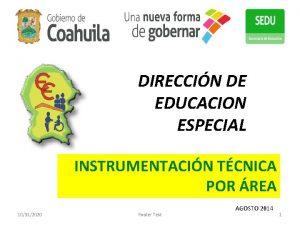 DIRECCIN DE EDUCACION ESPECIAL INSTRUMENTACIN TCNICA POR REA