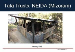 Tata Trusts NEIDA Mizoram January 2016 1 TATA