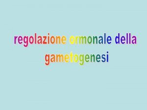 Controllo dellFSH Controllo dellLH Controllo della PRL Ruolo