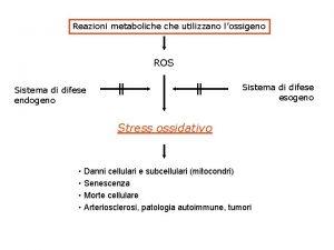 Reazioni metaboliche utilizzano lossigeno ROS Sistema di difese