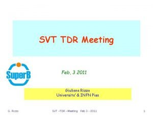 SVT TDR Meeting Feb 3 2011 Giuliana Rizzo