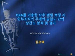 BioImaging Bone Fide Spine Phantom BFP BioImaging Technologies