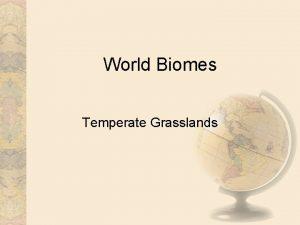 World Biomes Temperate Grasslands Climate Semiarid continental climates
