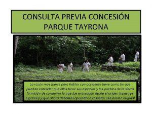 CONSULTA PREVIA CONCESIN PARQUE TAYRONA La razn mas