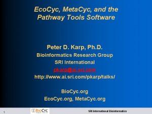 Eco Cyc Meta Cyc and the Pathway Tools
