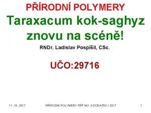 PRODN POLYMERY Taraxacum koksaghyz znovu na scn RNDr