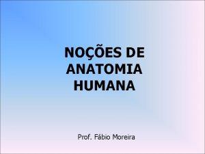 NOES DE ANATOMIA HUMANA Prof Fbio Moreira Anatomia