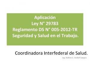Aplicacin Ley N 29783 Reglamento DS N 005