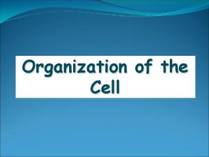 Organization of the Cell Cell Theory Cells are