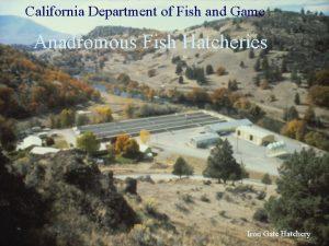California Department of Fish and Game Anadromous Fish