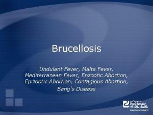 Brucellosis Undulant Fever Malta Fever Mediterranean Fever Enzootic