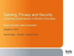 Gaming Privacy and Security e Gaming Experience in