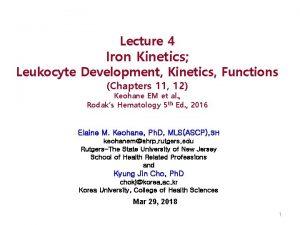 Lecture 4 Iron Kinetics Leukocyte Development Kinetics Functions