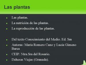 Las plantas Las plantas La nutricin de las