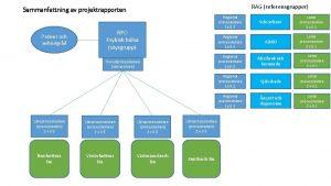 RAG referensgrupper Sammanfattning av projektrapporten Patient och anhrigrd