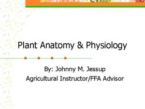 Plant Anatomy Physiology By Johnny M Jessup Agricultural