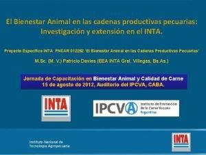 El Bienestar Animal en las cadenas productivas pecuarias
