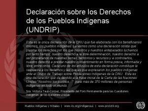 Declaracin sobre los Derechos de los Pueblos Indgenas