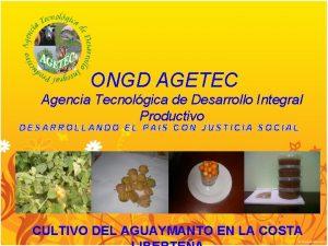 ONGD AGETEC Agencia Tecnolgica de Desarrollo Integral Productivo