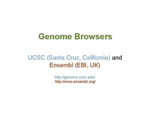 Genome Browsers UCSC Santa Cruz California and Ensembl
