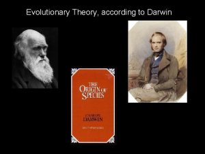 Evolutionary Theory according to Darwin Definitions and Components