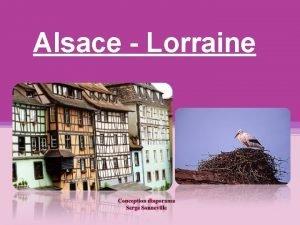Alsace Lorraine Lorraine A boire trop de mirabelle