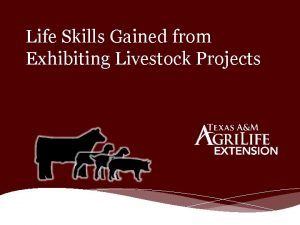 Life Skills Gained from Exhibiting Livestock Projects Livestock