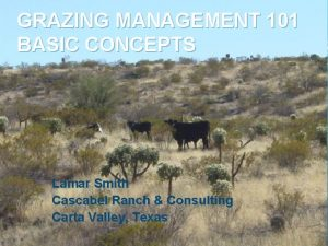 GRAZING MANAGEMENT 101 BASIC CONCEPTS Lamar Smith Cascabel