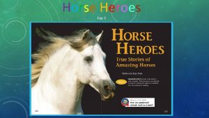 Horse Heroes Day 1 How can people and