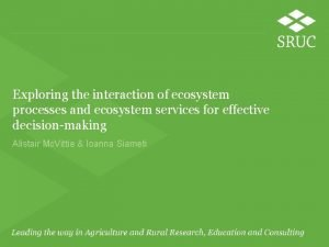Exploring the interaction of ecosystem processes and ecosystem