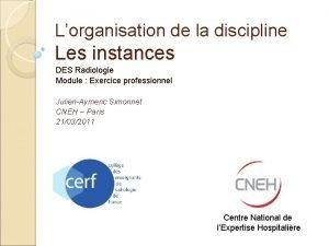 Lorganisation de la discipline Les instances DES Radiologie