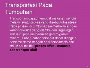 Transportasi Pada Tumbuhan Transportasi dapat membuat makanan sendiri