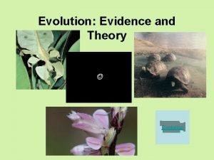 Evolution Evidence and Theory Evolution Where are fossils