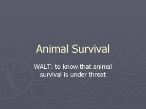Animal Survival WALT to know that animal survival