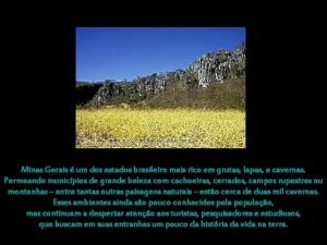 Minas Gerais um dos estados brasileiro mais rico