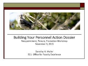 Building Your Personnel Action Dossier Reappointment Tenure Promotion