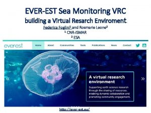 EVEREST Sea Monitoring VRC building a Virtual Resarch