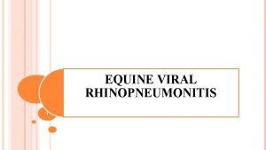 EQUINE VIRAL RHINOPNEUMONITIS 1 Synonyms EQUINE HERPES VIRUS