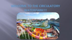 WELCOME TO THE CIRCULATORY WATERPARK Circulatory System A