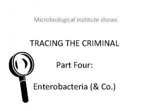 Microbiological institute shows TRACING THE CRIMINAL L Part