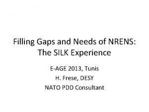 Filling Gaps and Needs of NRENS The SILK