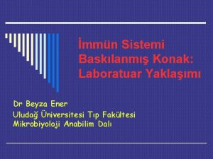 mmn Sistemi Basklanm Konak Laboratuar Yaklam Dr Beyza