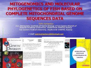 MITOGENOMICS AND MOLECULAR PHYLOGENETICS OF FISH BASED ON