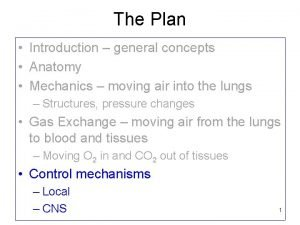 The Plan Introduction general concepts Anatomy Mechanics moving