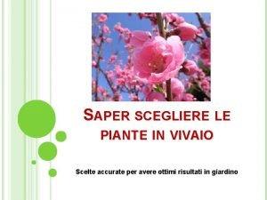 SAPER SCEGLIERE LE PIANTE IN VIVAIO Scelte accurate