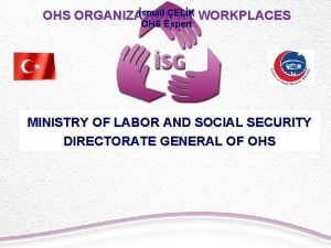 smail OHS ORGANIZAT IONELK AT WORKPLACES OHS Expert