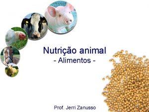 Nutrio animal Alimentos Prof Jerri Zanusso Alimentos Lembrando